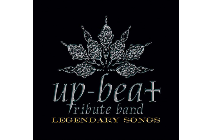 up-beat tribute band